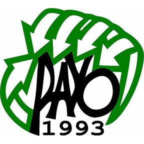 payo_logo